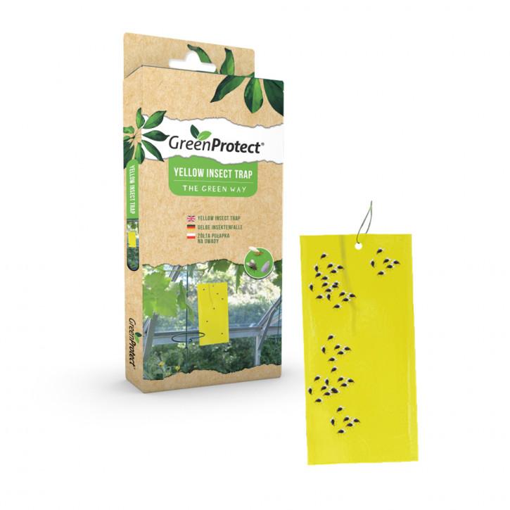 Insektenfalle (Gelbtafel)